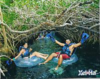 Disfrutando_del_agua